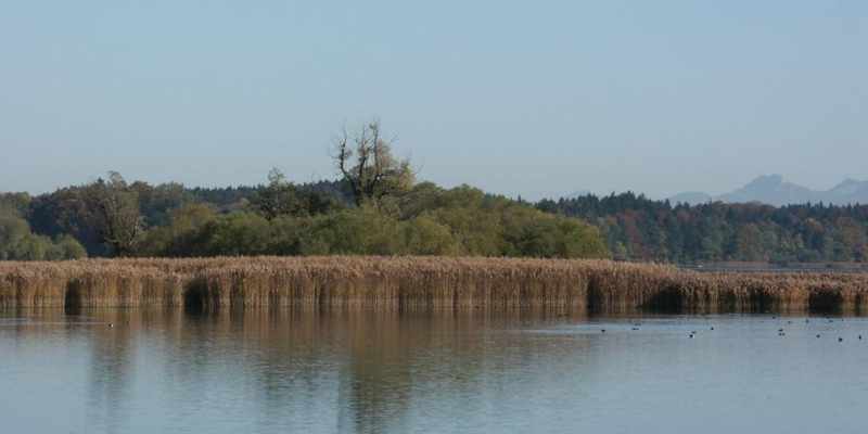 Der Seehamer See im Herbst 2012
